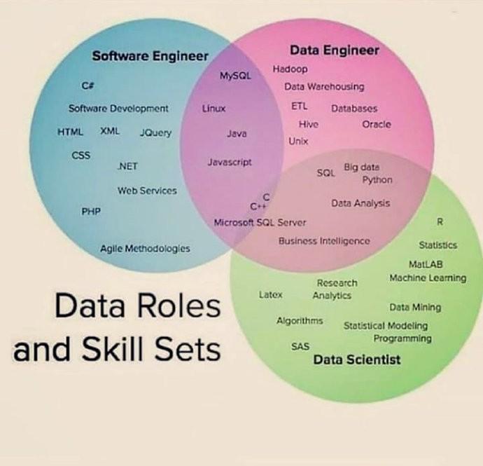 数据的角色和技能